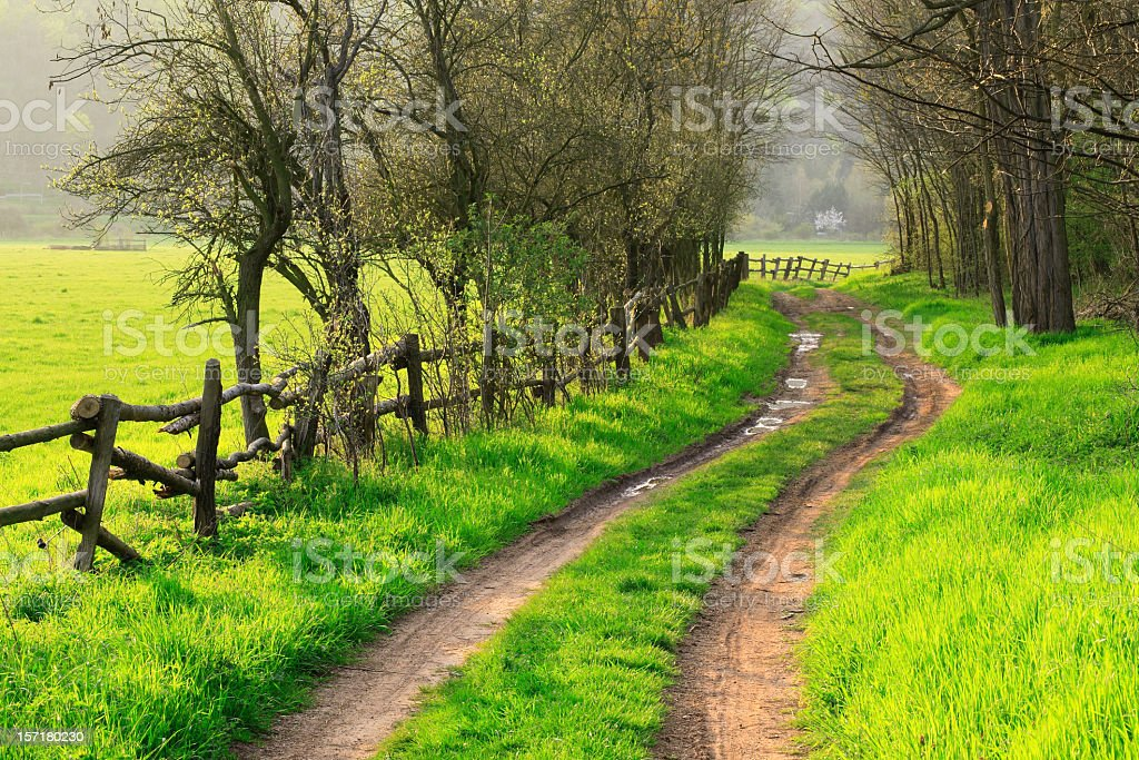 Farm Road in Spring royalty-free stock photo