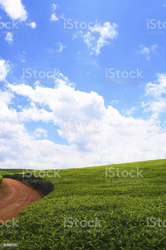 Farm Road royalty-free stock photo
