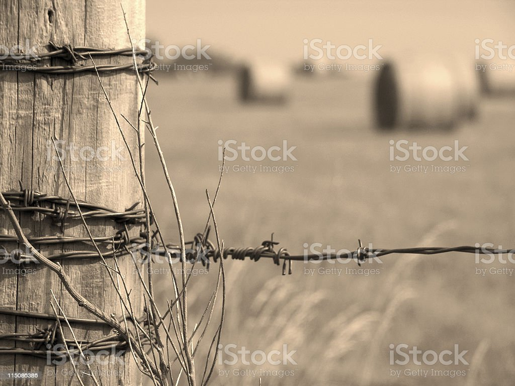 farm scenes - fence wire bales royalty-free stock photo