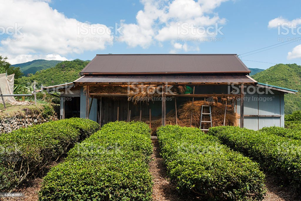 Farm Shed - Kumano Mountains, Japan stock photo