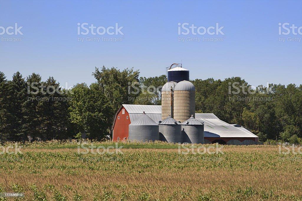 Farm, Silo, & Grain Bin royalty-free stock photo