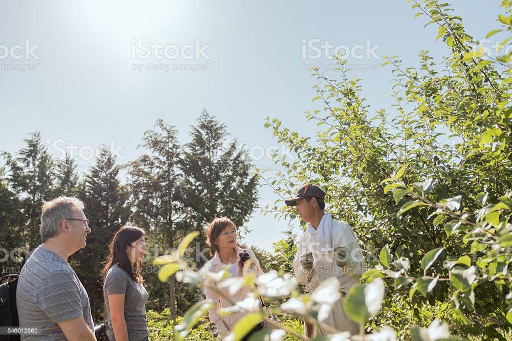 Farm Tour, Japanese Apple Farmer Teaching Tourists about Organic Methods stock photo