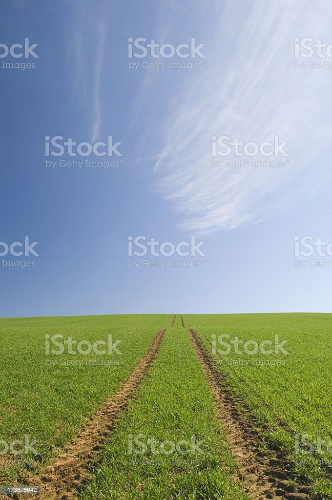 Farm track across field royalty-free stock photo