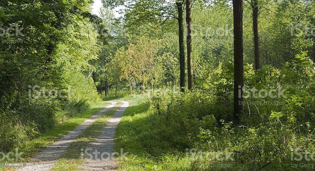 farm track in the Liliental royalty-free stock photo