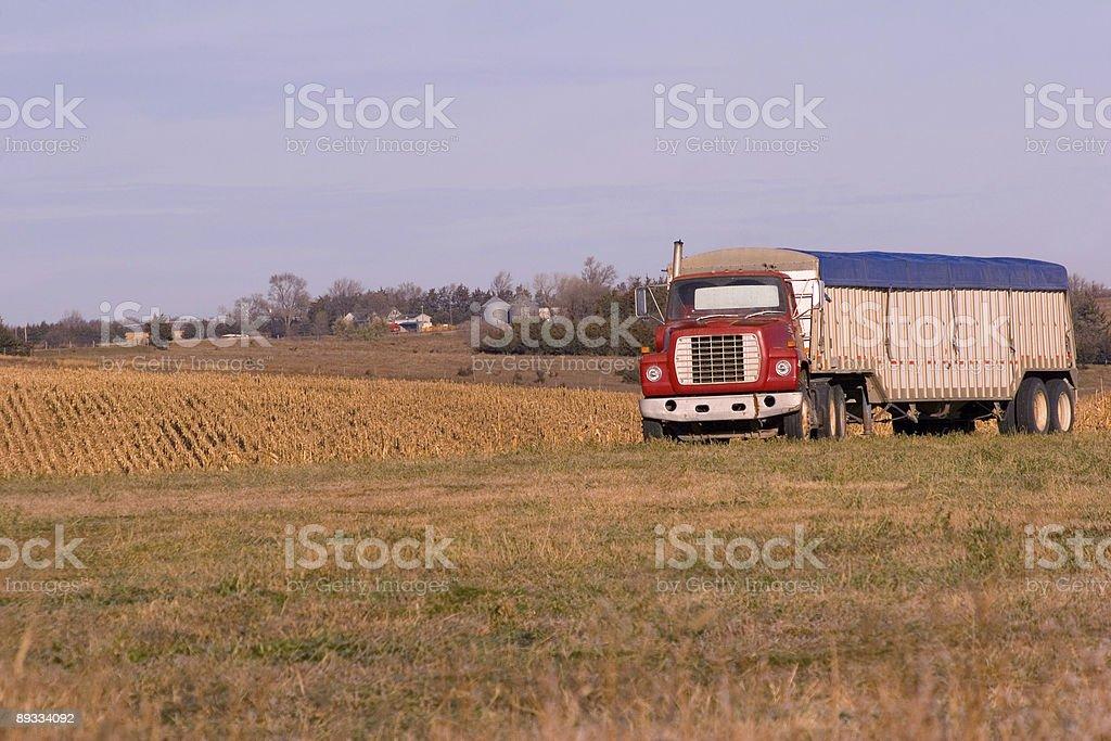 Farm Truck royalty-free stock photo