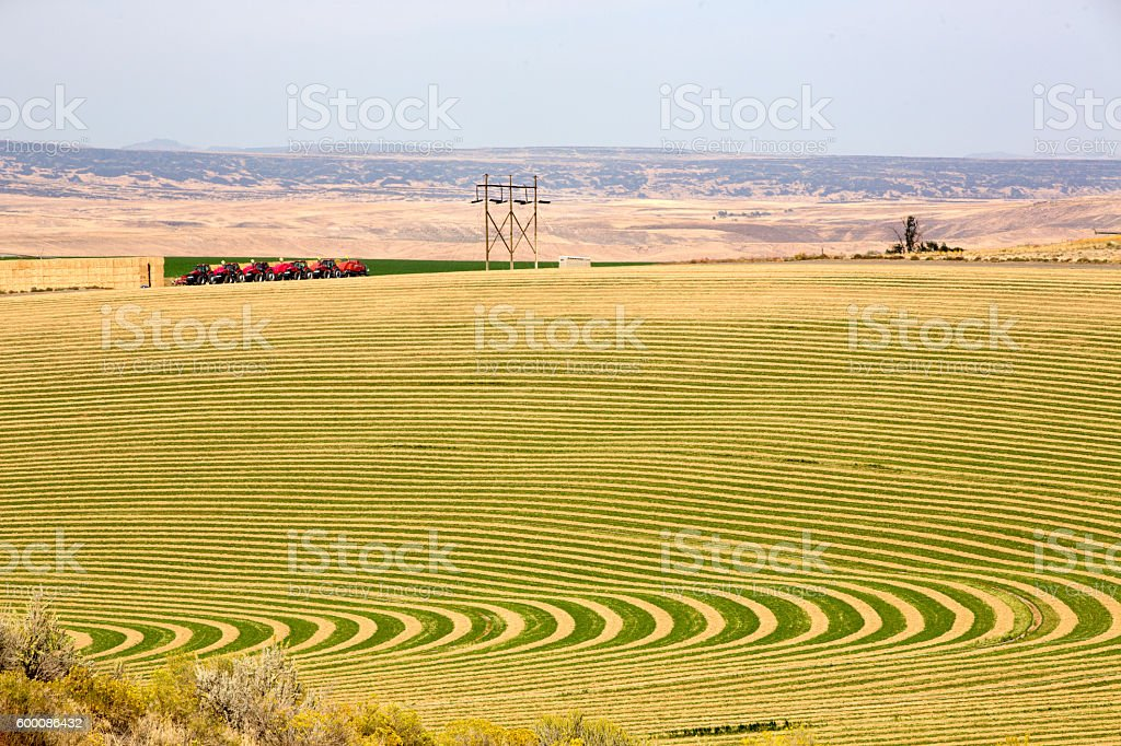 Farm with contoured planting for pivot irrigation stock photo