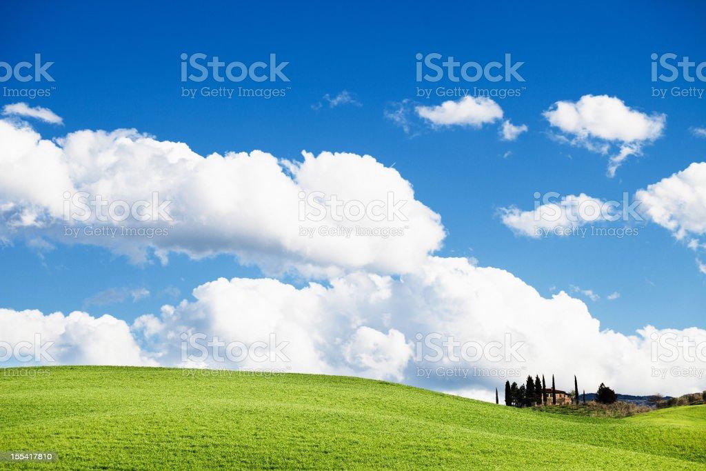 Farm with Cypress, Tuscany stock photo