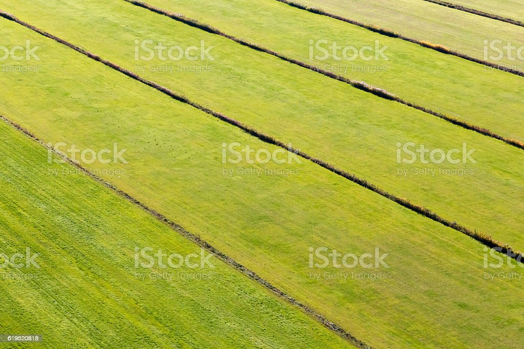 Farmed field stock photo