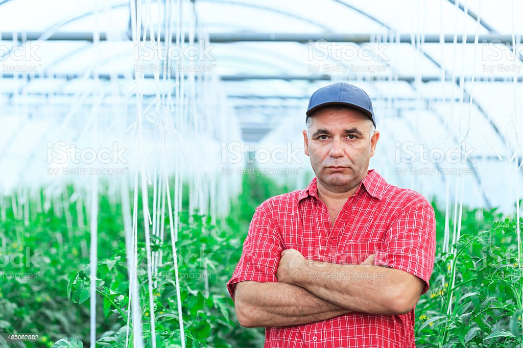 Farmer among plants stock photo