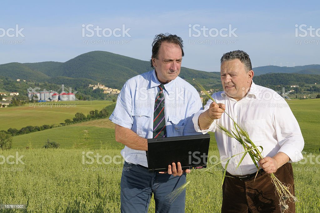 Farmer and Agronomist with Laptop in a Wheat Field royalty-free stock photo