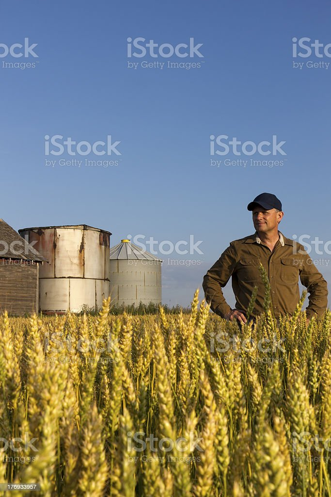 Farmer and Buildings royalty-free stock photo