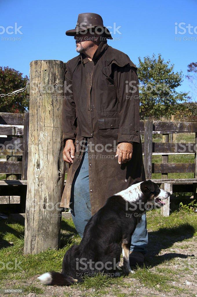 Agricultor y pastor de ganado foto de stock libre de derechos