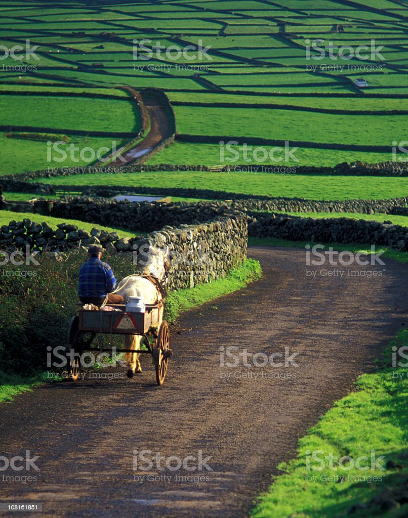 Farmer and Donkey with Buggy Walking Down Rural Road stock photo