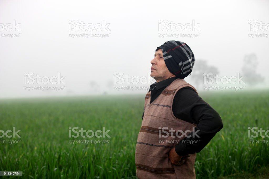 Farmer And Wheat Field stock photo