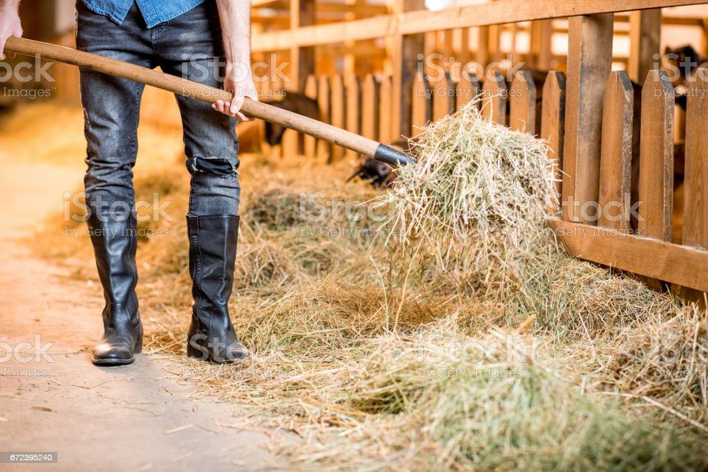 Farmer at the barn stock photo