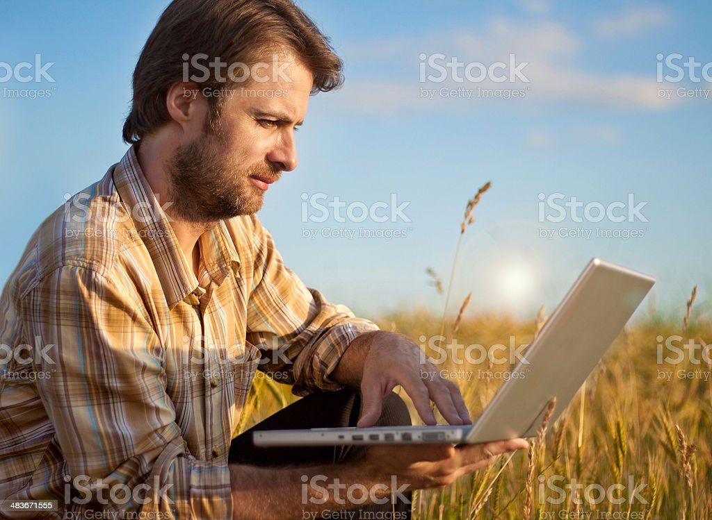 Farmer checking his wheat field with laptop computer stock photo