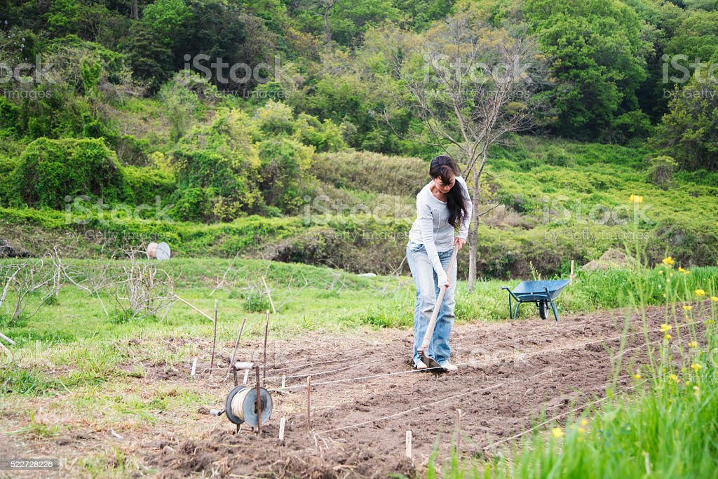 Farmer digging in her field stock photo