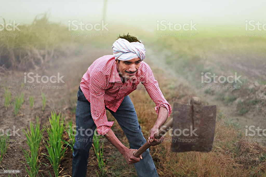 Farmer digging in his field using hoe stock photo