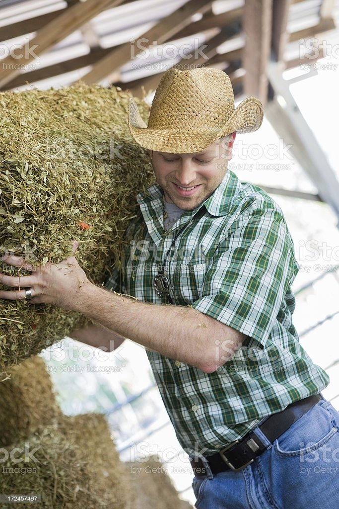 Farmer enjoying hauling hay in his barn royalty-free stock photo