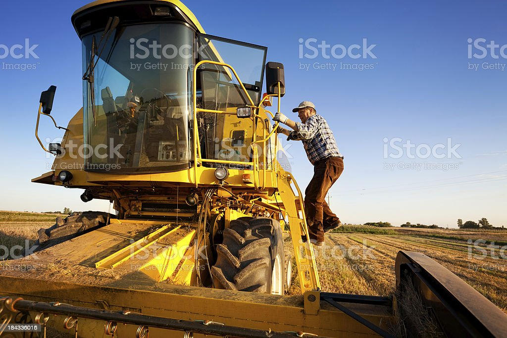 Farmer enters the combine harvester stock photo