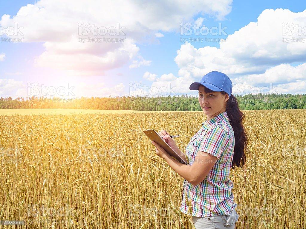 Farmer girl in a plaid shirt controlled his field wheat stock photo