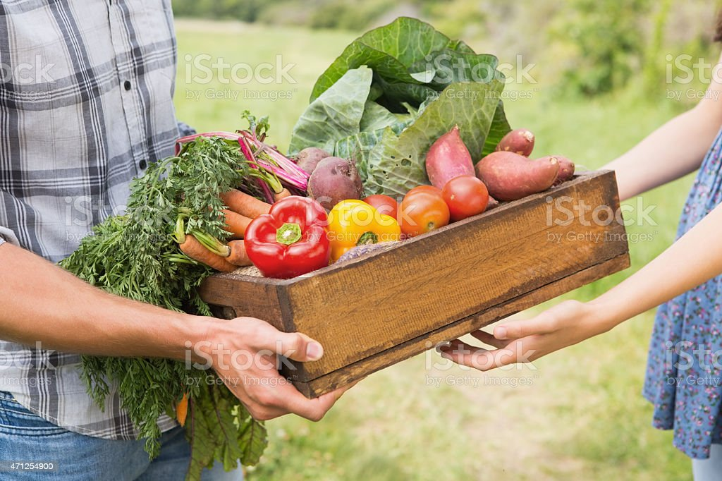 Farmer giving box of veg to customer stock photo