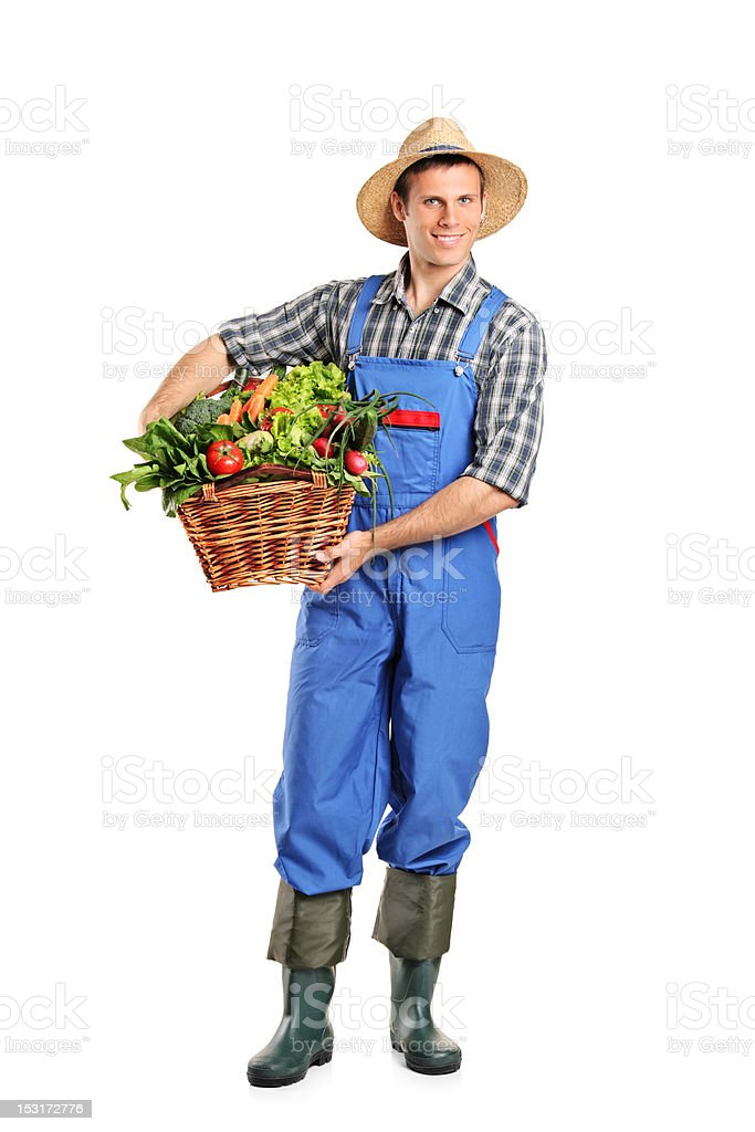 Farmer holding a basket full of vegetables royalty-free stock photo