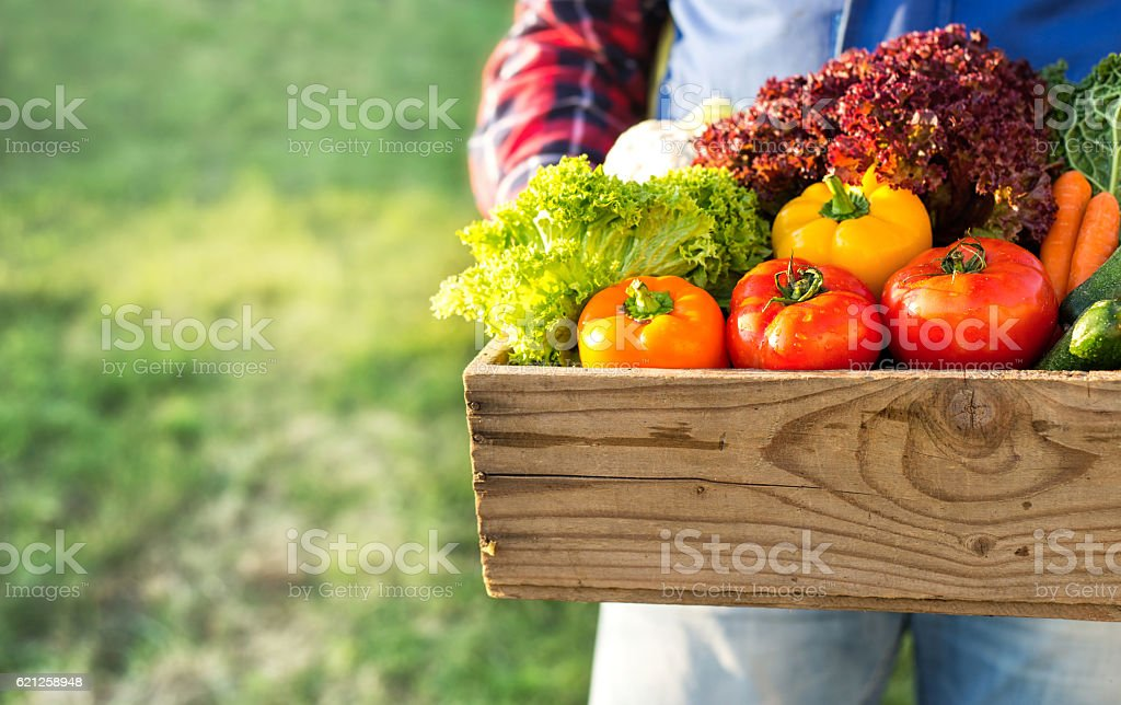 farmer holding box with fresh organic vegetables stock photo