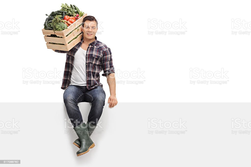 Farmer holding vegetables seated on panel stock photo