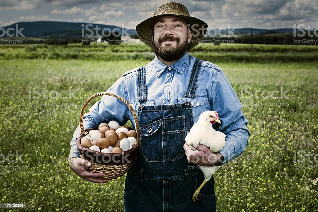 Farmer in blue overalls holding a chicken and basket of eggs stock photo