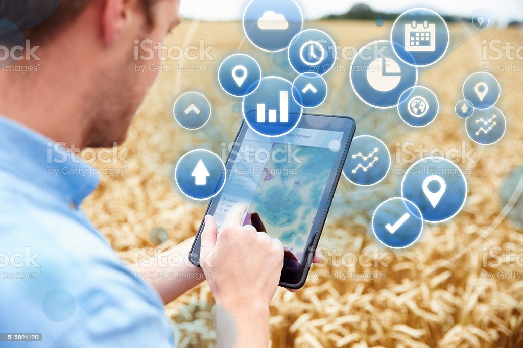 Farmer In Field Accessing Data On Digital Tablet stock photo