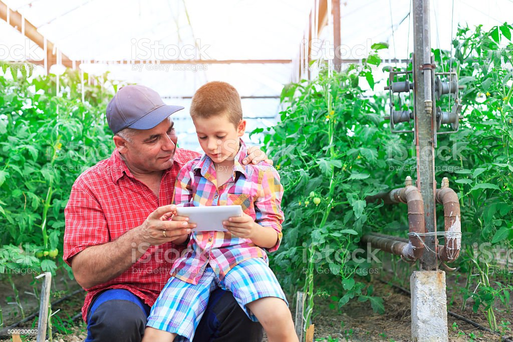 Farmer In Greenhouse Checking Plants Using Digital Tablet with cild stock photo