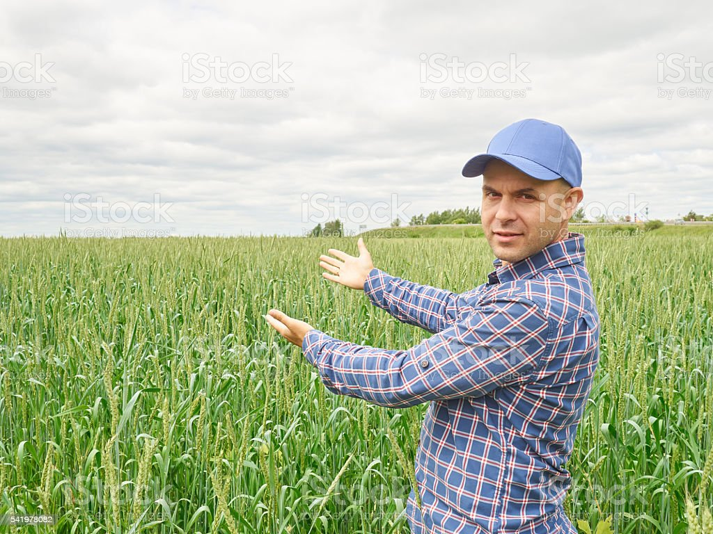 Farmer in plaid shirt controlled his field. stock photo