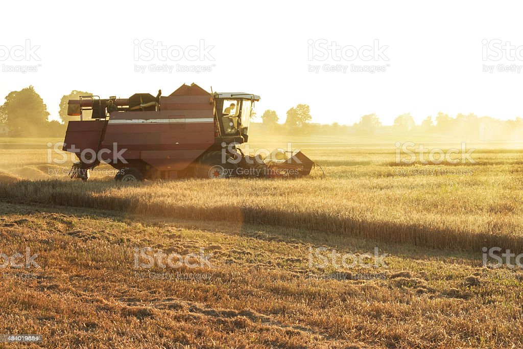 Farmer in tractor driving to the field stock photo