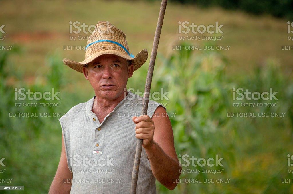 Farmer in Vi?ales, Cuba stock photo