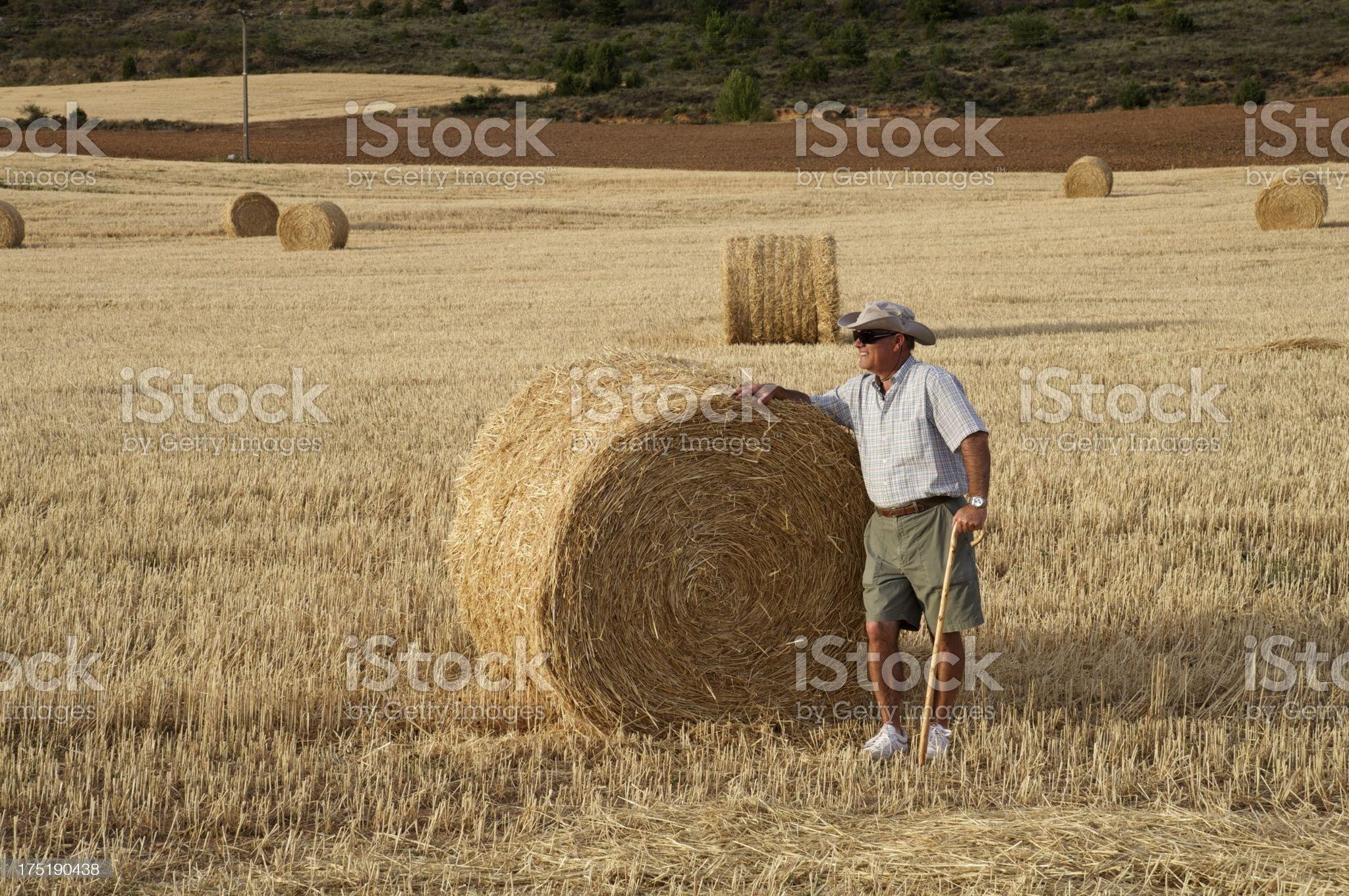 Farmer looking at his farmland royalty-free stock photo