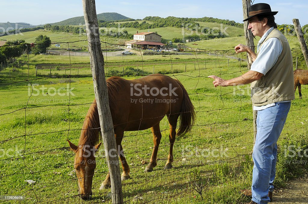 Farmer looking at his Horse royalty-free stock photo