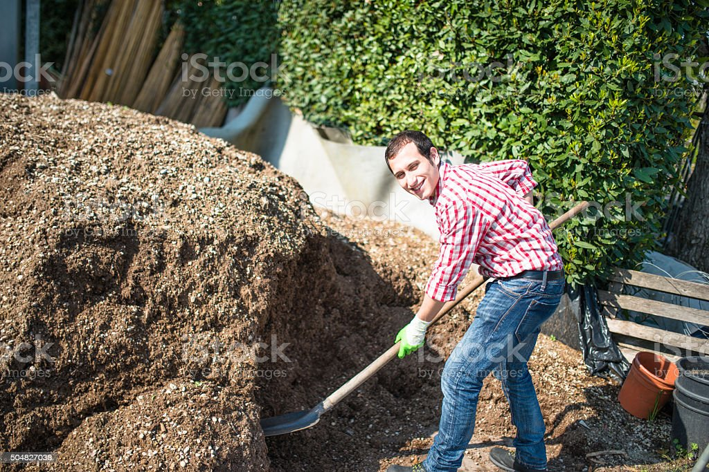 farmer man shoveling the manure stock photo