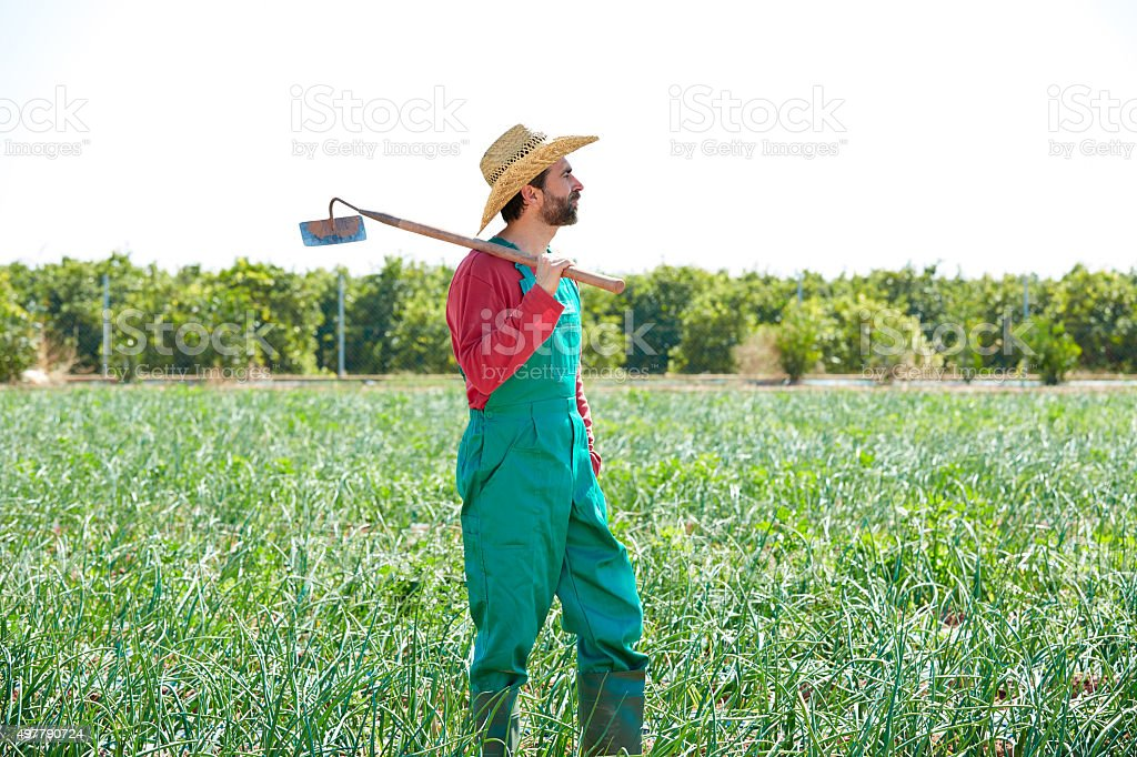 Farmer man with hoe looking at his field stock photo