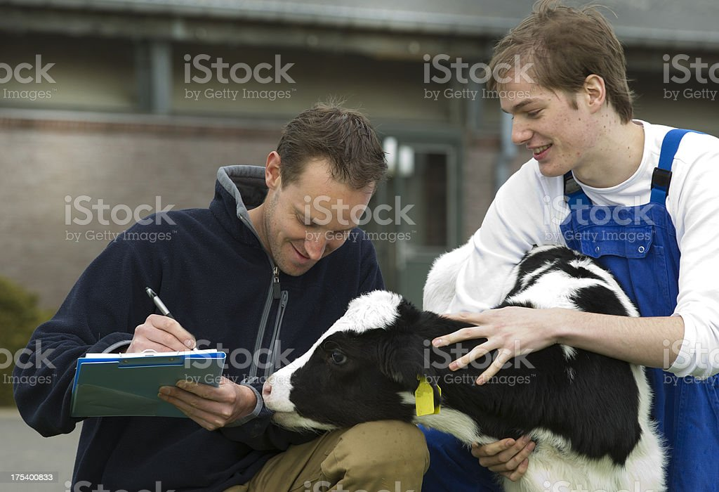 Farmer, mentor and apprentice royalty-free stock photo