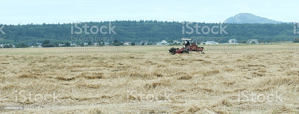Farmer mowing field and new houses in Skagit Valley WA royalty-free stock photo