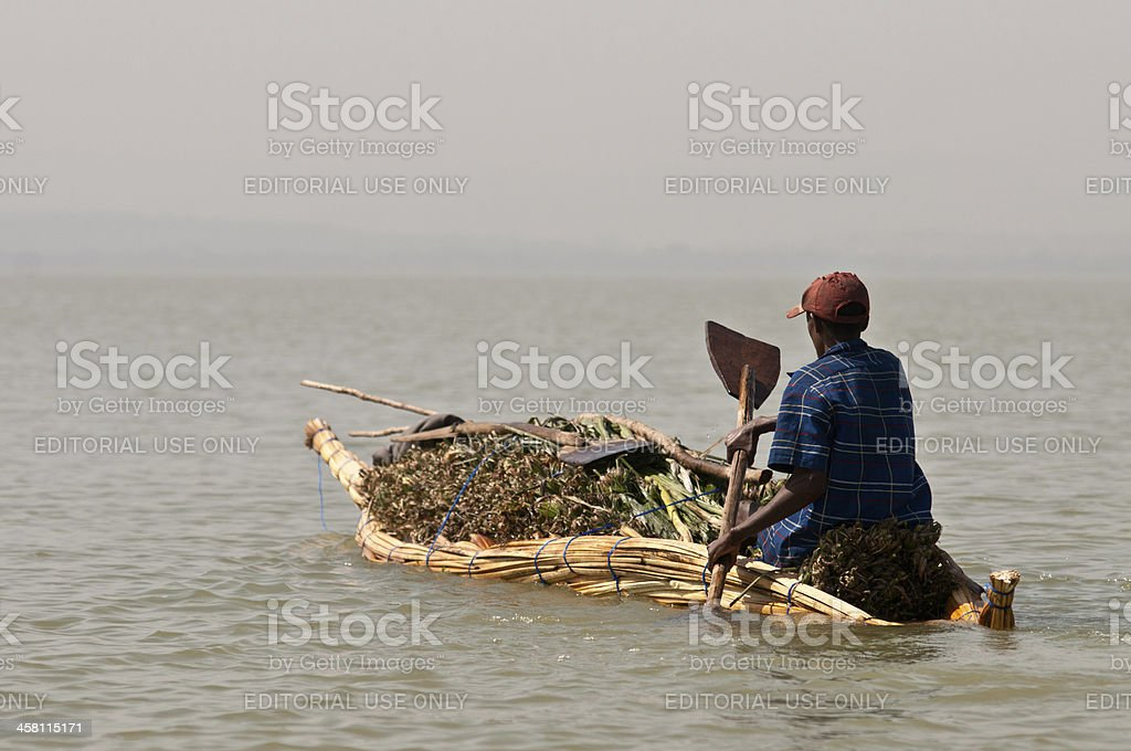 Farmer on his way to the marked stock photo