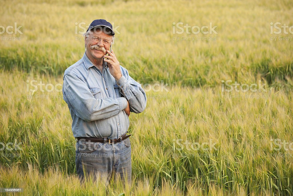 Farmer On Phone In Crop royalty-free stock photo