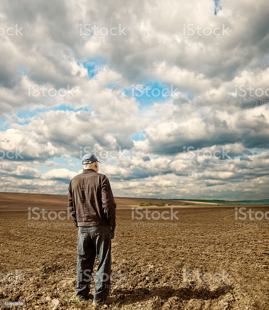 farmer on spring field stock photo