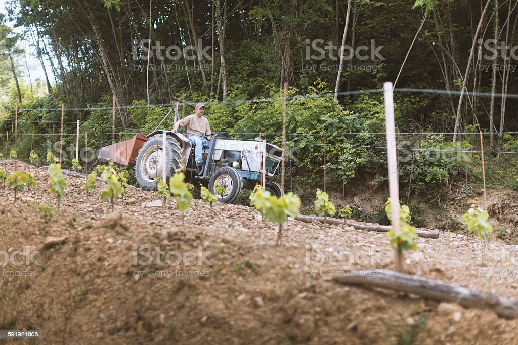 Farmer on Tractor stock photo