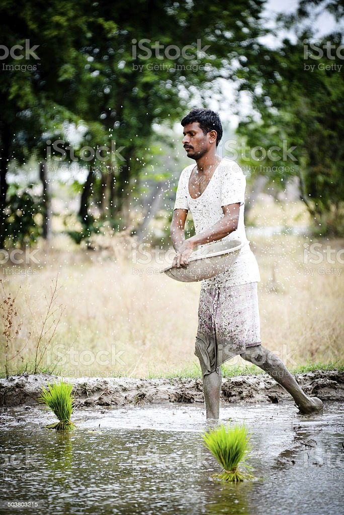 Farmer stock photo