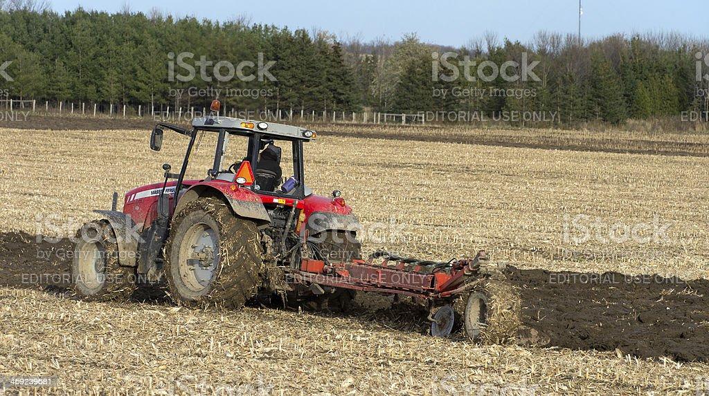 Farmer Plowing Corn Field stock photo