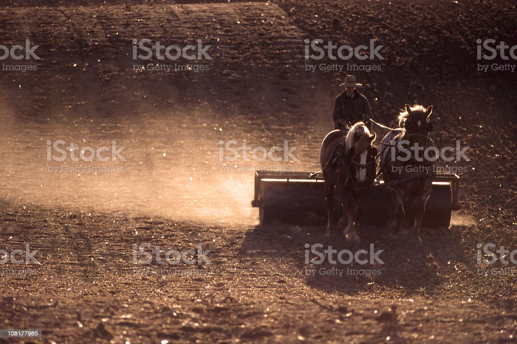 Farmer Plowing Field with Horses stock photo