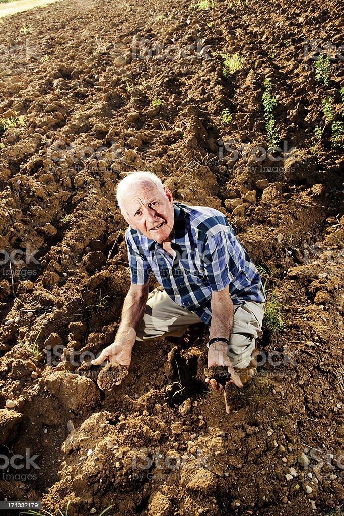 Farmer portrait royalty-free stock photo
