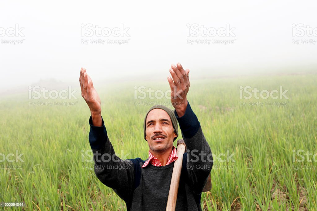 Farmer praying to god for good wheat crop stock photo